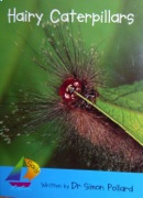 hairy_caterpillar