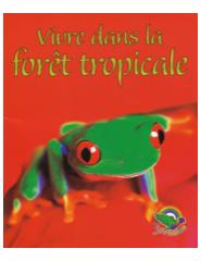 la_foret_tropical_3
